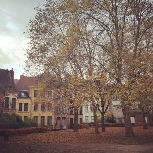 Le Vieux Lille en automne Amour bonheur chansons Age tendre et têtes de bois amitié