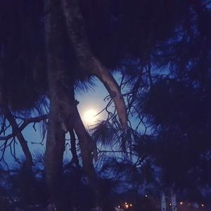 Almost Full Moon Lune presque pleine Nuit Ciel La beauté est partout Provence