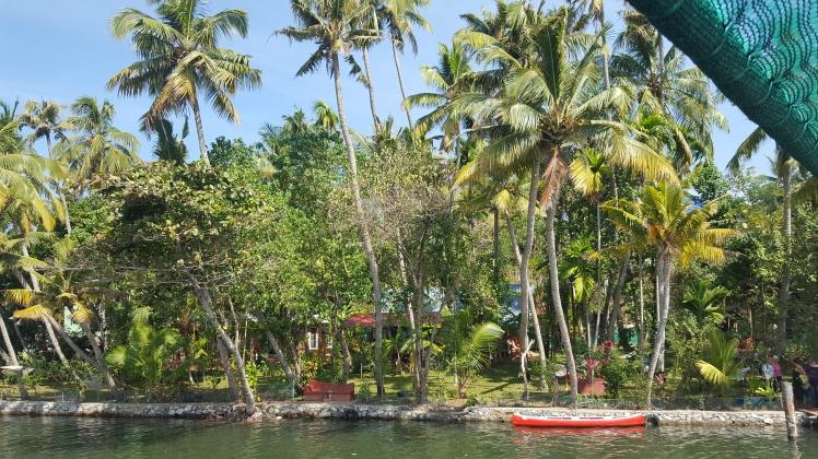 Backwaters Kollam - Alleppey Kerala India Inde