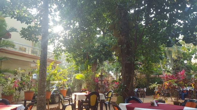 Inde India Chowara Kerala Voyage Travel Wanderlust
