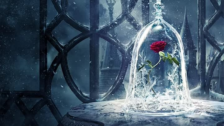 rose-belle-bete-critique-disney