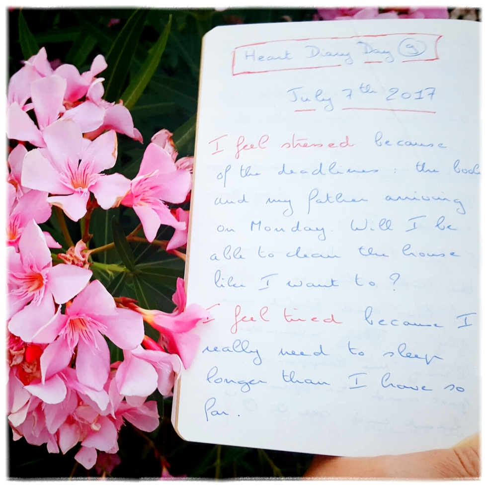Journal de mes émotions Pleine Conscience Mindfulness
