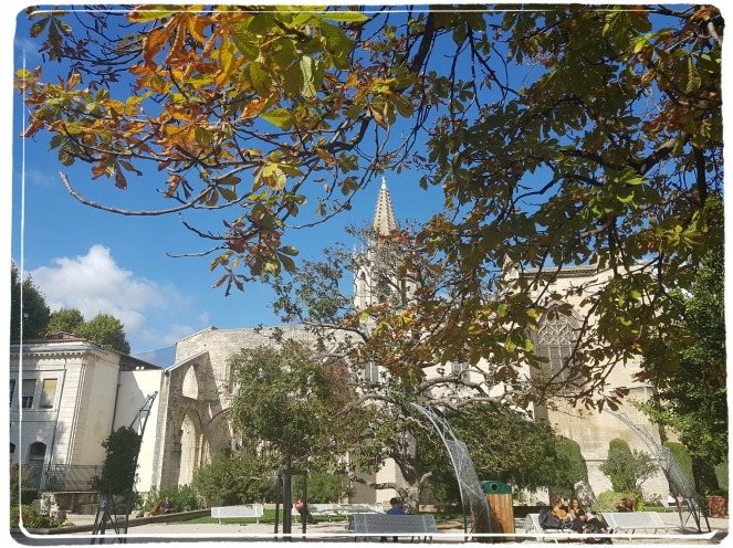 Avignon Provence Automne Fall Count YOur Blessings Gratitude Practice