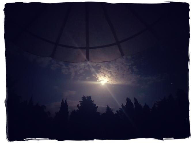 Almost Full Moon Gratitude Journal